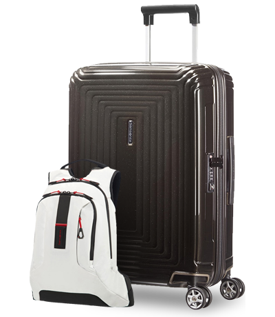 Samsonite Paradiver Light Backpack